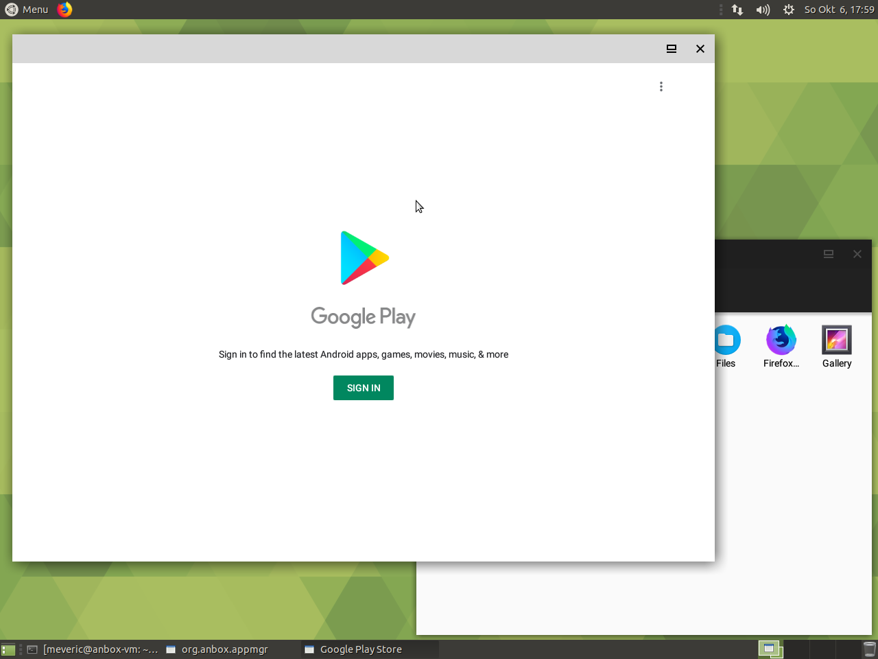 Figure 9 - Google Play Store on Anbox – we just need to login